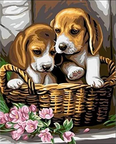 PKUOUFG DIY de Pinturas Cachorro en la Canasta Pintar por Numeros Adultos Niños DIY Pintura por Números con Pinceles y Pinturas 40 x 50 cm