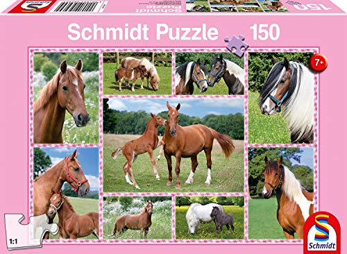 Schmidt- Puzzle Cavalli da Sogno, 150 Pezzi, 56269