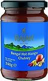Rajah Conserve de Mangues du Bengal Épicée Et Sucrée au Vinaigre 6 Paquets de 340 g