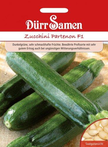 Zucchini Partenon F1