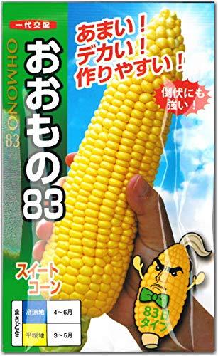 トウモロコシ 種子 スイートコーン おおもの83 とうもろこし (60粒)