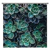 Duschvorhang – grün-blaue Sukkulenten Pflanzen Duschvorhänge für Badezimmer Dekor 183 x 183 cm, wasserdichter Stoff Duschvorhang-Set für Zuhause Badezimmer Dekor mit 12 Kunststoffhaken