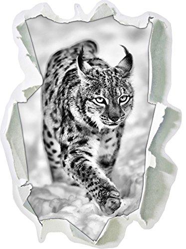 Stil.Zeit Monocrome, Luchs im Schnee Papier im 3D-Look, Wand- oder Türaufkleber Format: 62x45cm, Wandsticker, Wandtattoo, Wanddekoration
