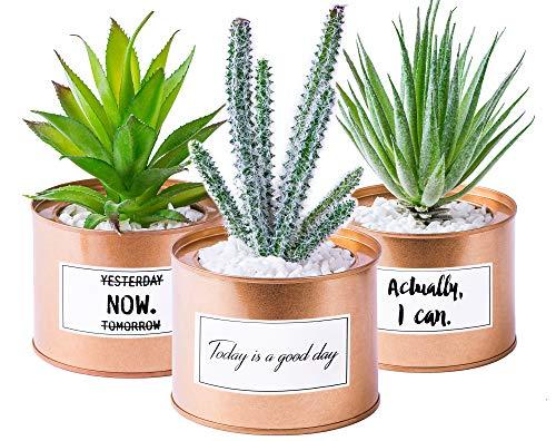 Odezza 3er Set Kunstpflanze klein im Topf rosegold | Künstliche Pflanzen im Topf 10 x 16 cm | 3 Stück Künstlicher Kaktus grün | Sukkulente Deko Kunstpflanzen im Topf