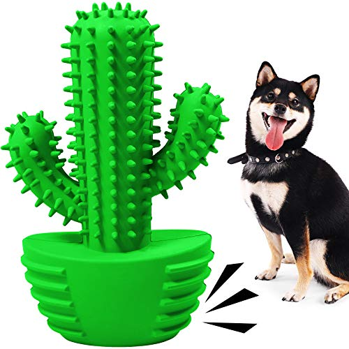 Pamlulu Dog Toothbrush Chew Toy