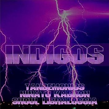 Indigos (feat. Niñato Kabron, Shoul, Libraloggia)
