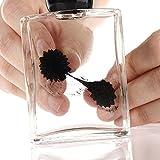 Ailiebhaus magnétiques ferrofluide liquides Jouets