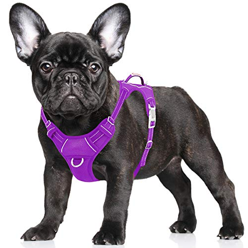 BARKBAY No Pull Dog Harness Large Step in Reflective Dog Harness with Front Clip and Easy Control Handle for Walking Training Running with ID tag Pocket(Purple,S)