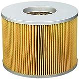 Fleetguard AF25567 filtro de aire