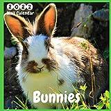 Bunnies 2022 Wall Calendar: Official Bunnies Calendar 2021, 12 Months, Bunnies Lovers Calendar