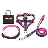 (DauStage) ハーネス リード 首輪 セット デニム 素材 選べる 4色 4サイズ 小型 中型 大型 犬用 トートバッグ付き (S, ピンク)