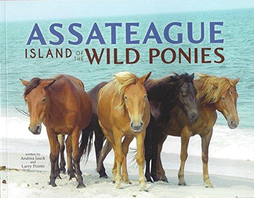 Assateague: Island of the Wild Ponies
