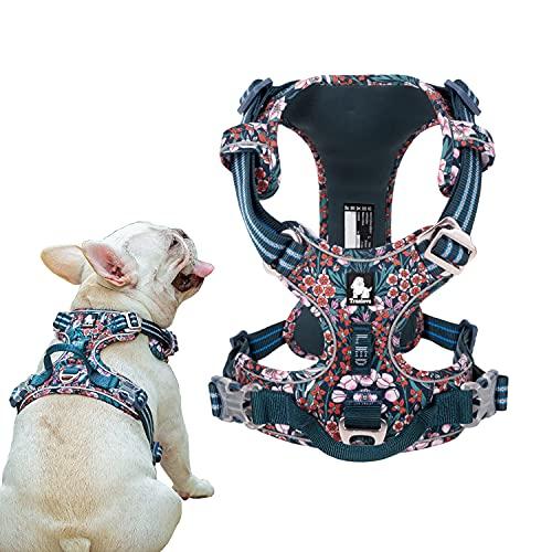 Tineer Blumenmuster No-Pull Hundegeschirr Reflektierendes Nylon Verstellbare Weiche, gepolsterte Weste Geschirr Training für kleine mittelgroße Hunde (S Brust: 43-56cm, Blau Rot)