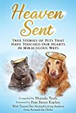 Heaven Sent: True Stories of Pets That Have Touched Our Hearts in Miraculous Ways