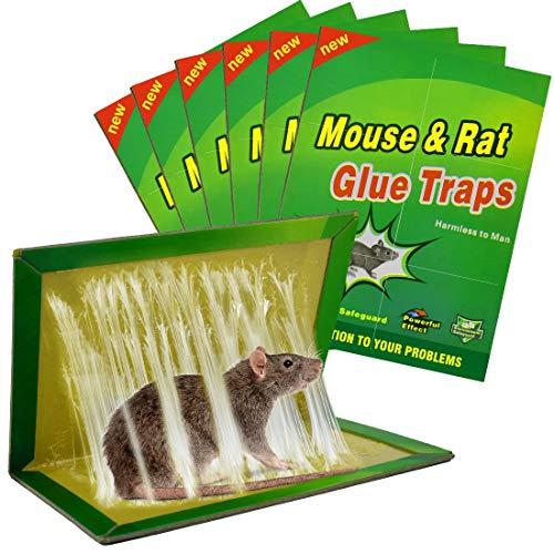 Colla per Topi Trappola per Topi, 6 pezzi Trappole per Topi Vischio per Topi Grandi Colla Topicida Trappola per Ratti [Confezione da 6]