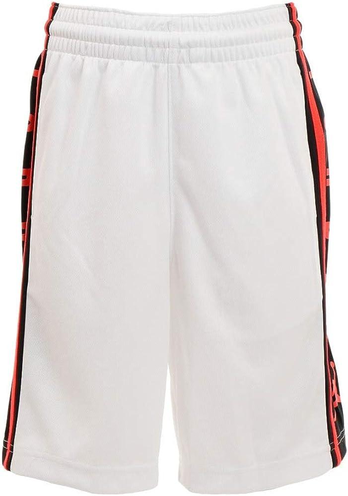 Jordan Boys Youth Mesh Vertical Shorts