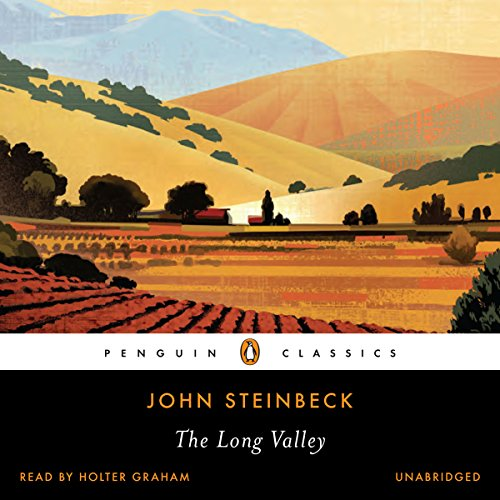 The Long Valley audiobook cover art