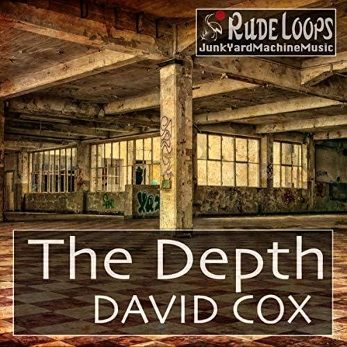David Cox