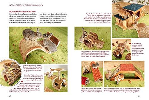 Spiel- und Wohnideen für Zwergkaninchen (GU Tier aktiv) - 8