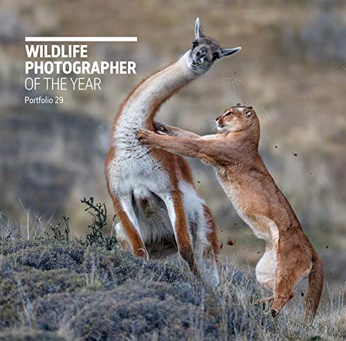 Wildlife Photographer of the Year: Portfolio 29