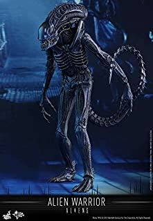 Movie Masterpiece Alien Warrior Sixth Scale Figure by Hot Toys by Hot Toys