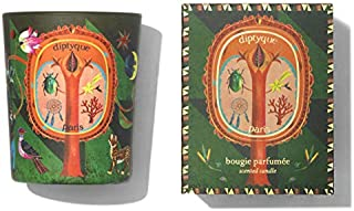 Diptyque Holiday Protective Pine Candle 2.4 ounces (Small Candle)