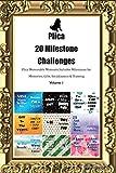 Plica 20 Milestone Challenges Plica Memorable Moments.Includes Milestones for Memories, Gifts, Socialization & Training Volume 1