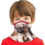 Möpse, Sofas, Decken, Farbfotos Drucken Vielseitige Multifunktions-Kopfbedeckung Halsmanschette Sturmhaube Helmfutter Reitgesichtsabdeckung für Kinder im Freien UV-Schutz