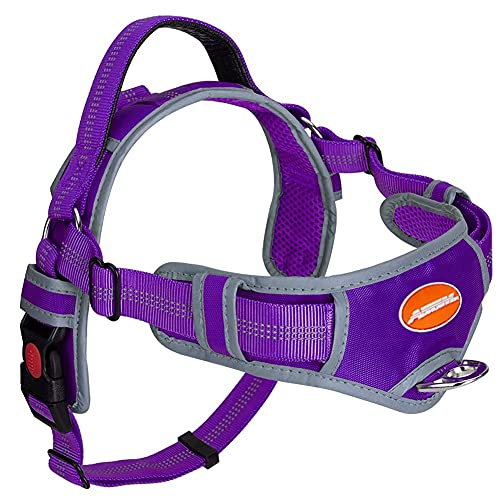 AdventureMore No Pull Choke Free Dog Halter Harness Leash Set - Dog Harness with Handle & 5 ft Double-Handle Shock Absorbing Bungee Training Leash (L(Chest 17-35 in, Neck 18-26 in), Purple)