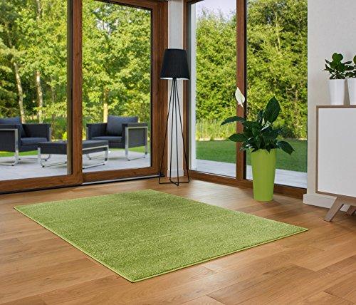 LUKSUS Designer Teppich Friese Einfarbig Modern Verschiedene Größen Grün (120x170)