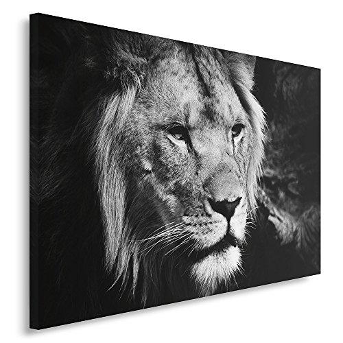 Feeby. Cuadro en lienzo - 1 Parte - 80x120 cm, Imagen impresión Pintura decoración Cuadros de una pieza, LEÓN, NATURALEZA, BLANCO Y NEGRO
