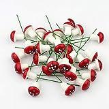 10 Mini espuma Red Seta Jardín Miniatura En maceta Suculenta Bonsai Craft YAHALOU