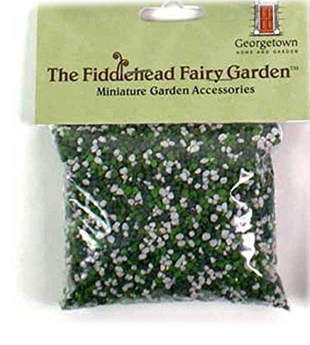 Fiddlehead Fairy...