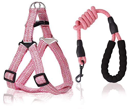 Smaige No Pull Dog Harness and Leash Set - Heavy Duty & Adjustable Basic Harness for Puppy, Small and Medium Dogs & Cats ( Pink, M [ 8lb-20lb Dogs] )