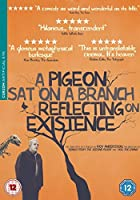 A Pigeon Sat On a Branch Reflecting On Existence - Subtitled
