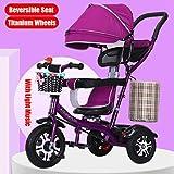 AQWWHY 4-en-1 Empuje y Ride Cochecito Triciclo con de Ajustable Asiento pabellón Grande 360 ° Reversible 5 -Point arnés Sillas de Paseo for 1-6 años de Cochecito de bebé Trike (Color : B)