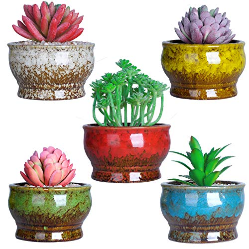 4.3 Inch Ceramic Succulent Planter Cactus Pots with Drainage Modern Small Glazed Flower Plants Containers Tiny Pots Perfect for Indoor/Outdoor Plants, Pack of 5