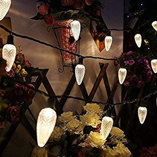 MAXINDA Commercial Grade C9 Big Led Christmas Lights Outdoor Warm White,18Ft 25 LEDs String Tree Lights Festive Mood Lighting,2 Fuses Included,Patio Garden Xmas Halloween Holiday Decor
