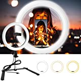 Emart 10-inch Photography LED...