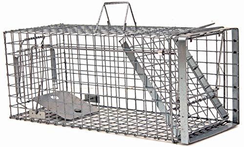Holtaz Hardy 102x34x34x34 cm 1 Porta Gabbia Trappola in Metallo per Catturare Animali Vivi. con Extra Un'Esca.