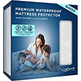 Ultra Plush 100% Waterproof Premium Mattress Protector, Luxuriously Soft and Comfortable, Protects Against Dust Mites and Allergens, Stretchable Deep Pocket Ensures Snug, Easy Fit (Queen Size)