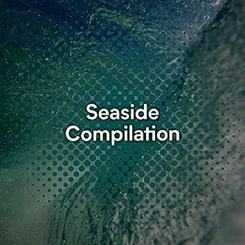 """ Calming Seaside Compilation """