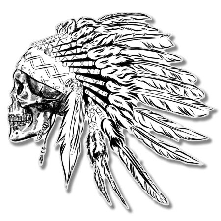 AK Wall Art Indian Chief Skull Vinyl Sticker - Car Phone Helmet - Select Size