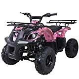 X-Pro 125cc ATV 4 Wheels Quad 125 ATV Quads with LED Lights, Big 19'/18'Tires! (Leaf Pink)