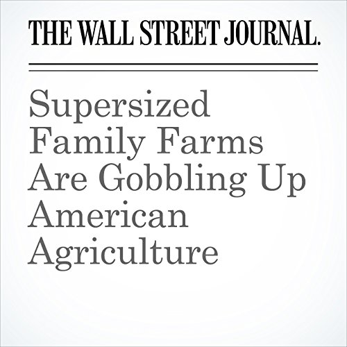 Supersized Family Farms Are Gobbling Up American Agriculture copertina