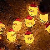 J.SCT-5 Decoraciones Luces cálidas Papá Noel, para Fiestas románticas con temática de Hadas en Interiores, Fiestas al Aire Libre, Bodas y días Festivos, Luces LED de Cadena de Navidad de 3 Metros, l