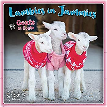 Best goats in coats Reviews