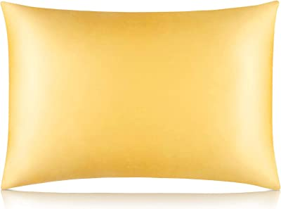 Wonwo Silk Pillowcase, 25 Momme 100% Natural Mulberry Both Sides Silk Pillowcase King Size for Hair and Skin with Hidden Zipper, 1PC, Champagne