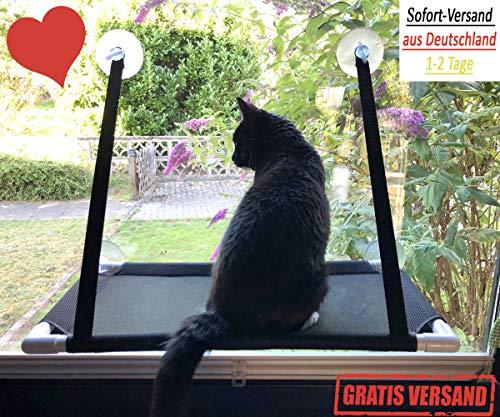 Premium Fensterplatz für die zufriedene Katze Katzenliege Mausblick 360° Ausblick Hängematte Fenstermontage Sonnenbad Katzen-Hängematte Fensterliegeplatz Fenster Bett TOP starken Saugnäpfen