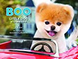 Boo. Little Dog In The Big City (Boo the Dog)